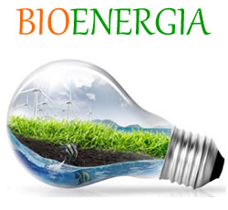 logo_bioenergia